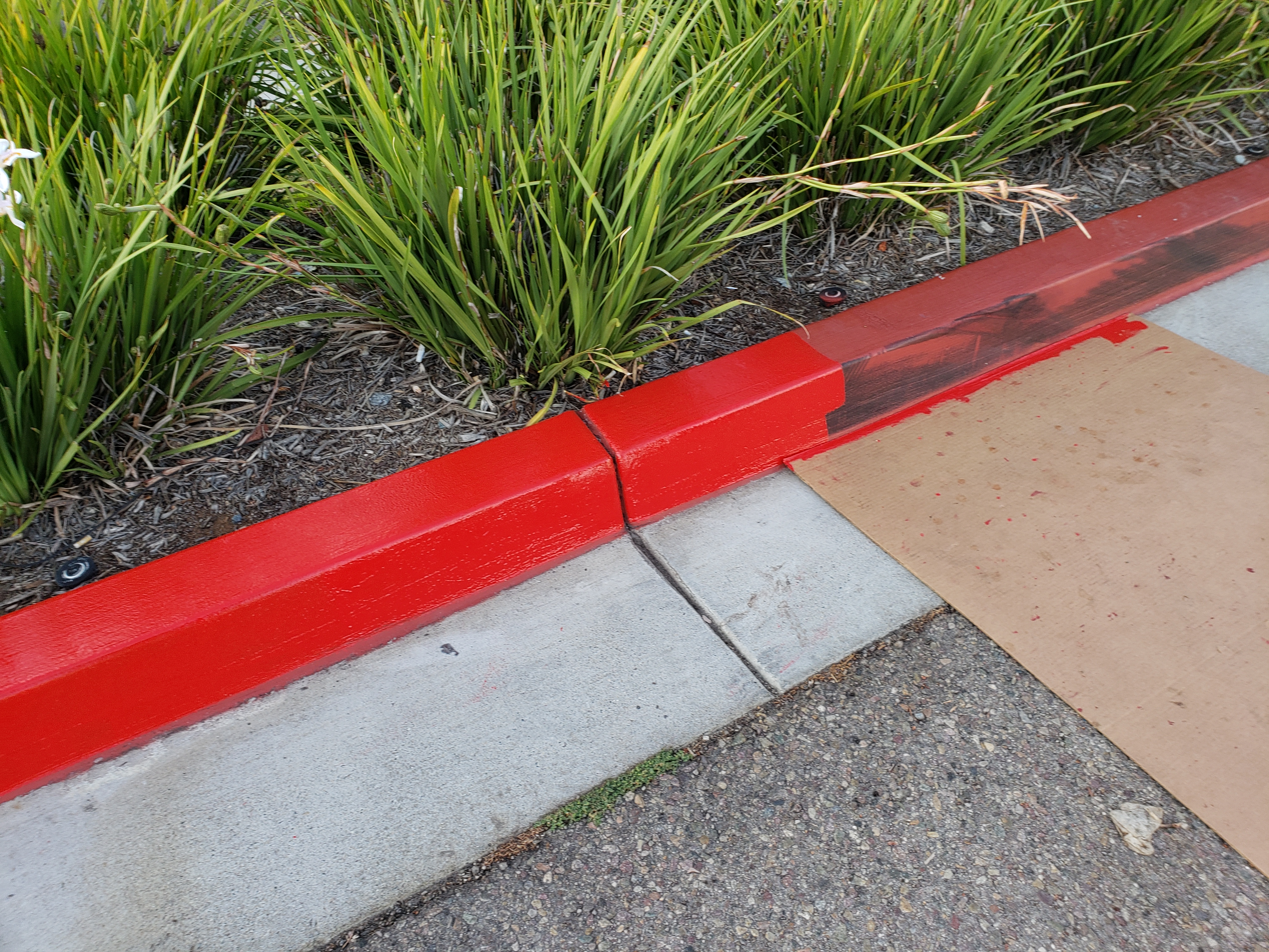 20190723 192507 - Curb Painting Services San Diego